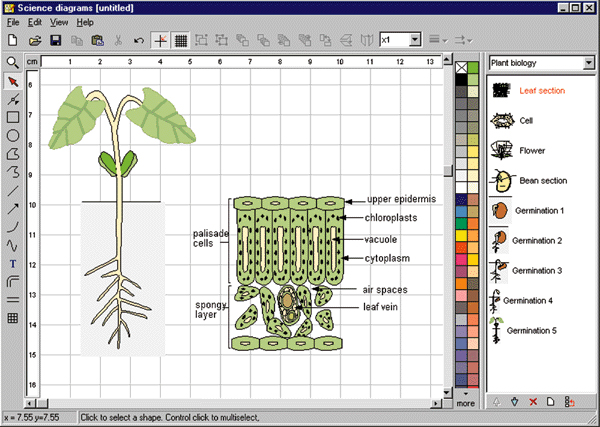 Biology diagram drawing software wiring library science diagrams by focus educational software rh focuseducational com smartdraw ci medical diagram drawing software ccuart Choice Image
